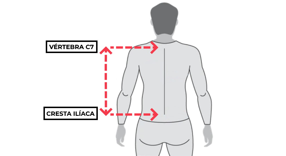 como medir torso