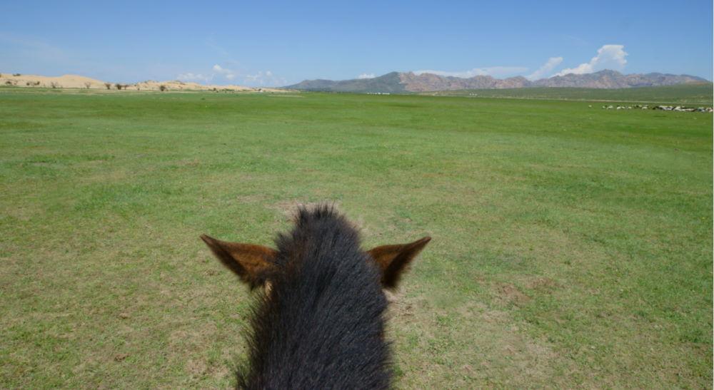 mongolia viaje